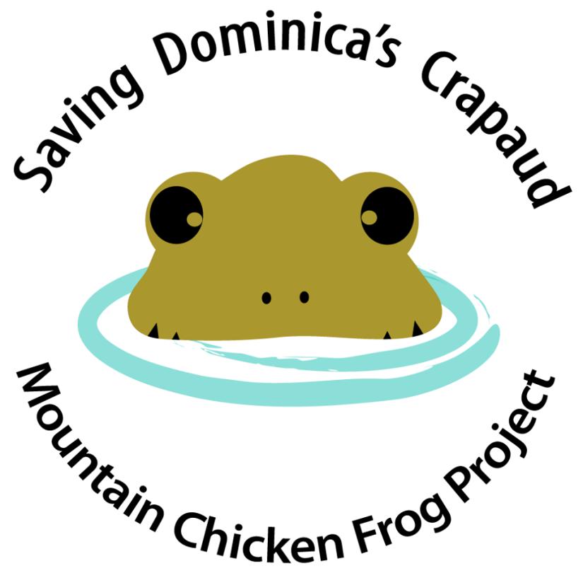 mountainchickenfrogproject